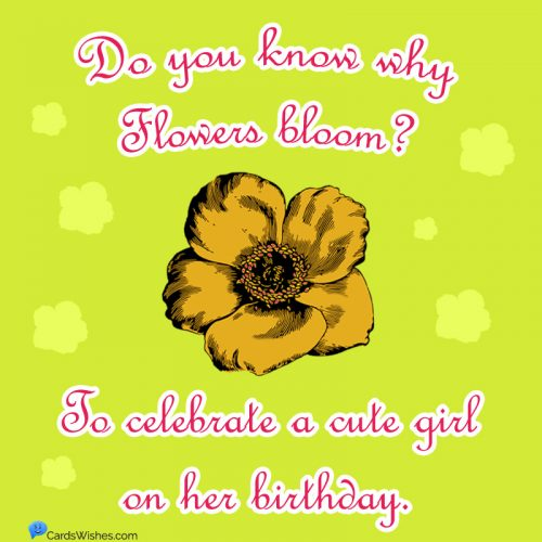 Do you know why flowers bloom? To celebrate a cute girl on her birthday.