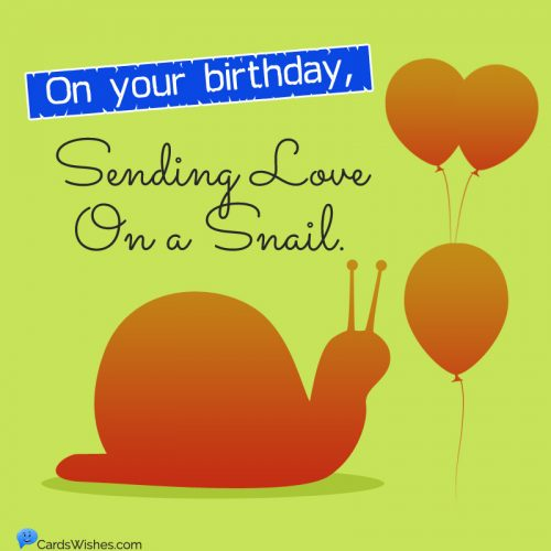 On your birthday, sending love on a snail.