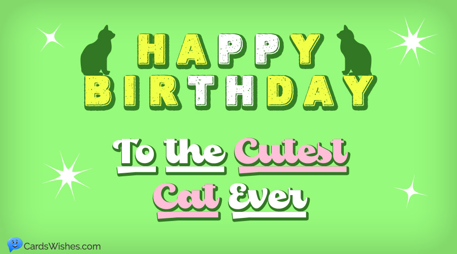Happy Birthday to the cutest cat ever.