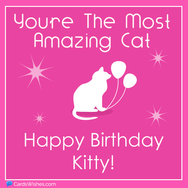 You're the most amazing cat. Happy Birthday, Kitty!